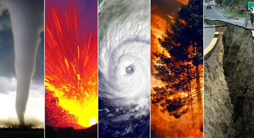 dissertation topics on disaster management