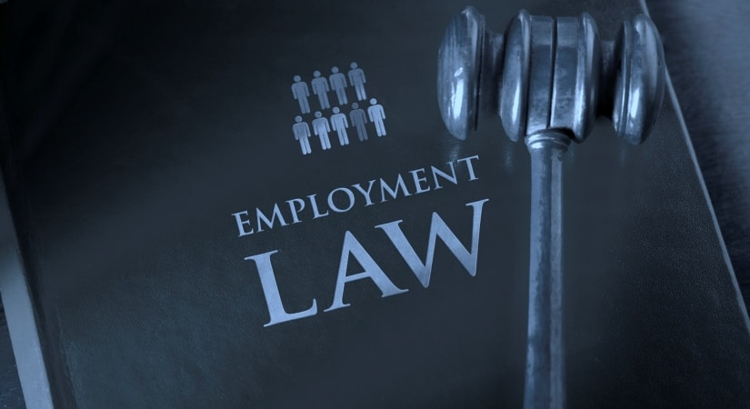employment Law dissertation topics