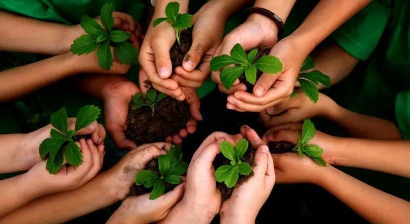 dissertation topics in environmental education
