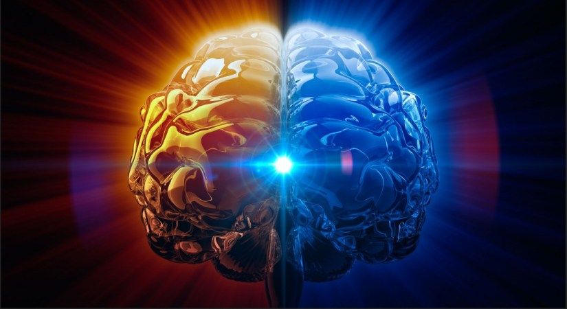 27 Dissertation Topic In Neuropsychology To Choose From Topics